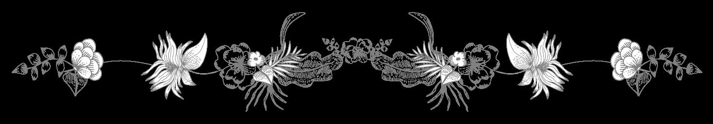contacta-a-martha-olguin-tijuana